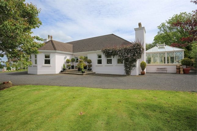 4 bed detached house for sale in Seven Mile Straight, Muckamore, Antrim BT41