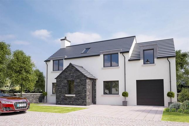 Thumbnail Detached house for sale in Site 3 Lecale Park, Downpatrick
