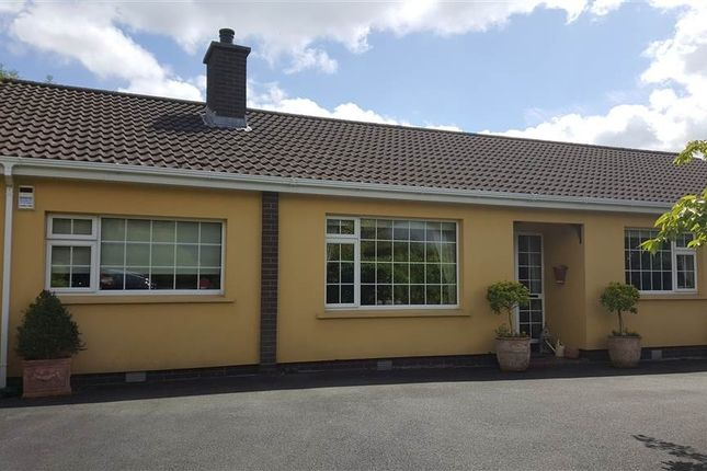 Thumbnail Bungalow for sale in Avoca Lawns, Warrenpoint