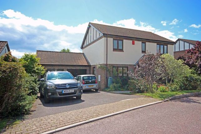 Thumbnail Detached house for sale in Dares Orchard, Colyford, Colyton