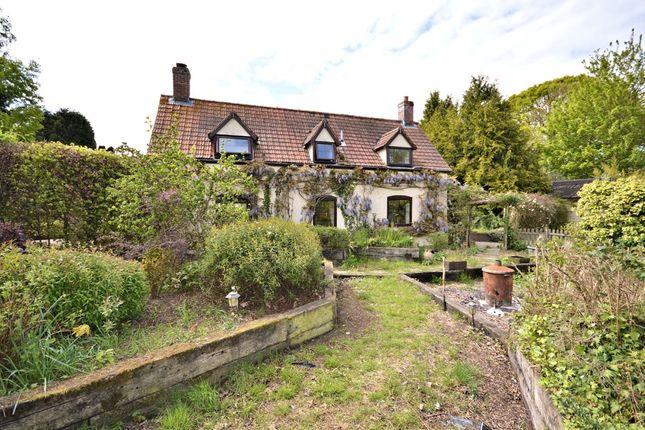 Thumbnail Cottage for sale in Bunnetts Loke, Lyng, Norwich