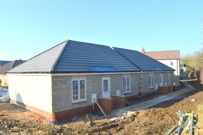 Thumbnail Detached bungalow for sale in Maple Road, Curry Rivel, Somerset
