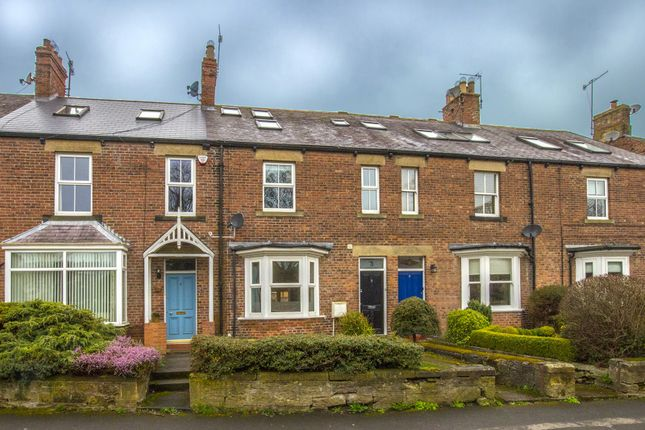 Thumbnail Property to rent in Abbey Terrace, Morpeth