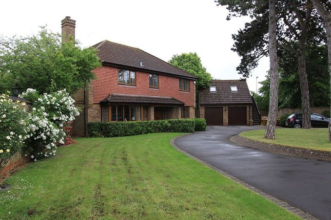 Thumbnail Detached house for sale in The Chestnuts, Abingdon, Oxfordshire