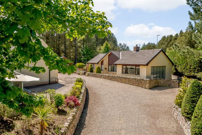 Thumbnail Property for sale in Scremerston, Berwick-Upon-Tweed
