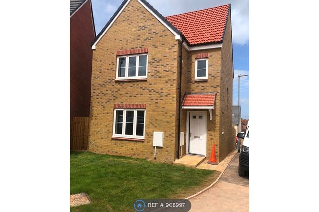 Thumbnail Detached house to rent in Wigeon Road, North Petherton