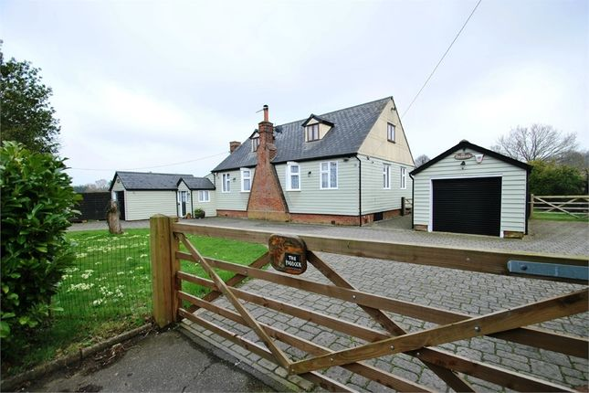 Thumbnail Detached bungalow for sale in Park Hall Road, Gosfield, Halstead, Essex