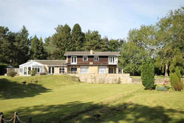 Thumbnail Detached house for sale in Runnymede Road, Darras Hall, Ponteland, Newcastle Upon Tyne, Northumberland