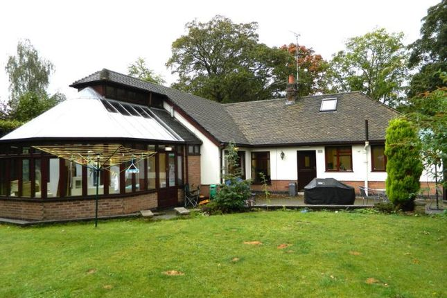 Thumbnail Detached bungalow for sale in Swithland Lane, Rothley, Leicester