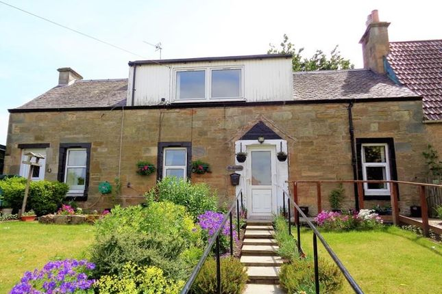 Thumbnail Semi-detached house to rent in Ladybank Road, Pitlessie, Cupar