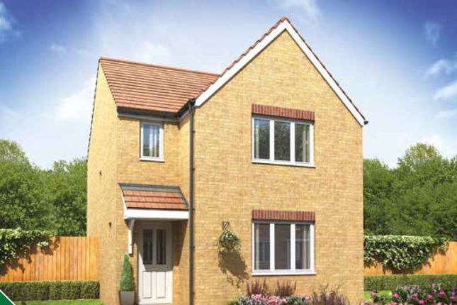 Thumbnail Detached house for sale in Maple Road, Shaftesbury