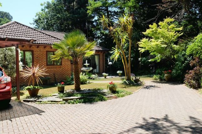 Thumbnail Bungalow for sale in Western Road, Branksome Park, Poole