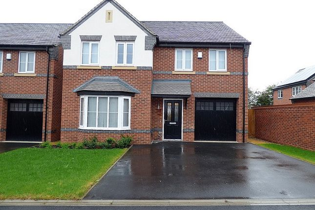 Thumbnail Detached house to rent in Stafford Drive, Littleover, Derby