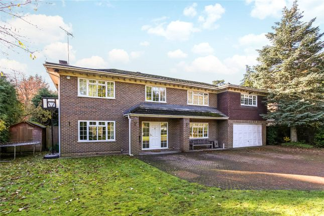 Picture No. 19 of Armitage Court, Sunninghill, Berkshire SL5