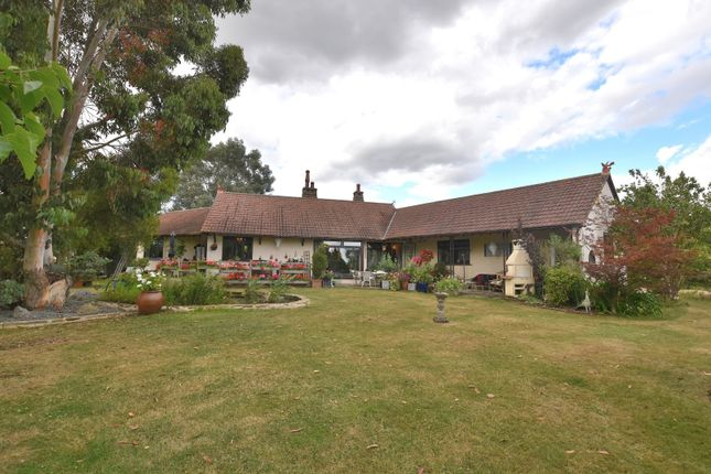 Thumbnail Detached bungalow for sale in Langford Road, Wickham Bishops (Witham)
