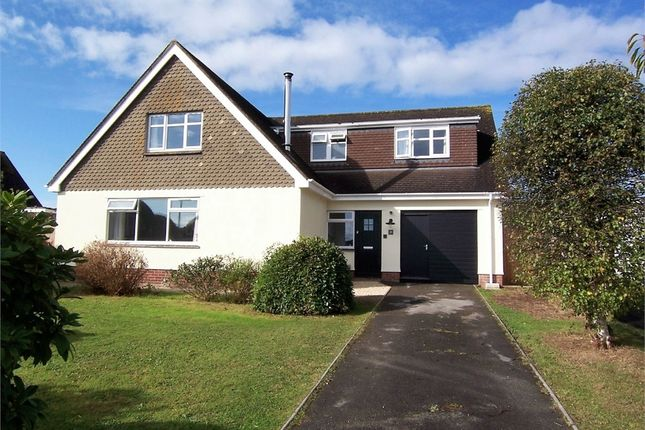 Thumbnail Detached house for sale in Colyford, Colyton, Devon