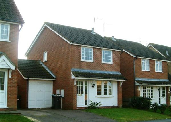 Thumbnail Detached house to rent in Dovedale, Carlton Colville, Lowestoft