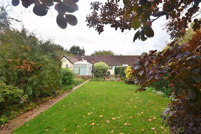 Thumbnail Bungalow for sale in St. Swithuns Road, Hempsted, Gloucester