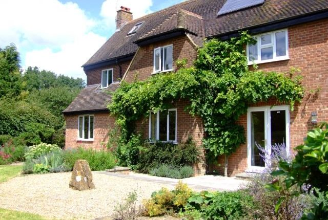 Thumbnail Detached house to rent in Underhill Lane, Westmeston, Hassocks