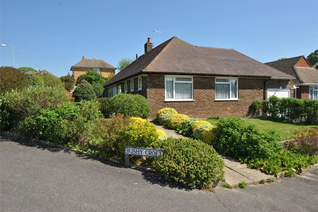 Thumbnail Detached bungalow for sale in Bushy Croft, Bexhill-On-Sea, East Sussex