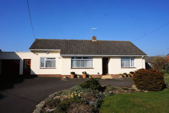 Thumbnail Detached bungalow for sale in North End, Creech St. Michael, Taunton
