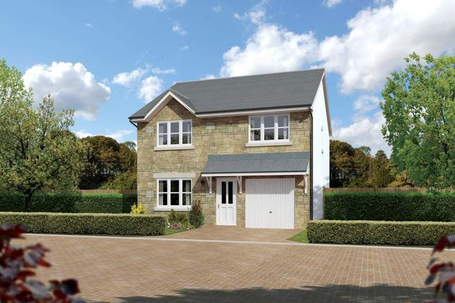 """Thumbnail Detached house for sale in """"Denewood"""" at Meikle Earnock Road, Hamilton"""