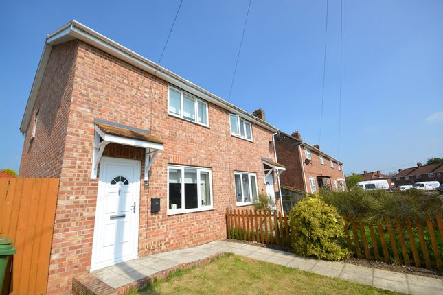 Thumbnail Semi-detached house to rent in Willbye Avenue, Diss