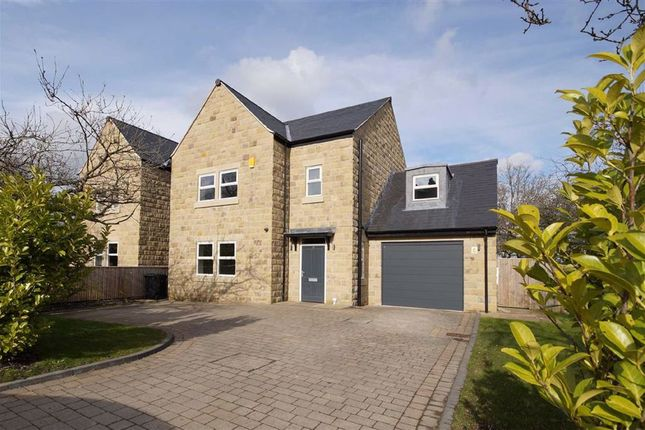 Thumbnail Property to rent in Green Lane, Harrogate, North Yorkshire
