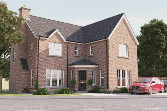 Thumbnail Detached house for sale in 5, Drumlin View, Dromore