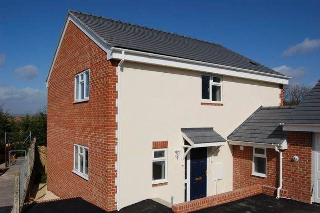 Thumbnail Detached house to rent in Hill Head Close, Glastonbury