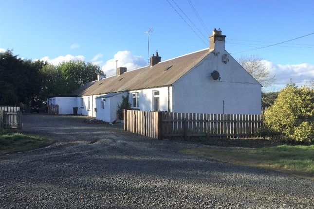 Thumbnail Semi-detached house to rent in Coach House The, Heriot, Midlothian