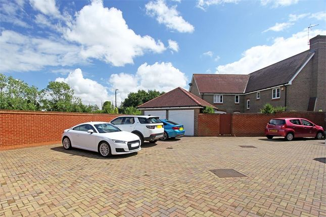 Thumbnail Detached house for sale in Tulip Walk, Sittingbourne