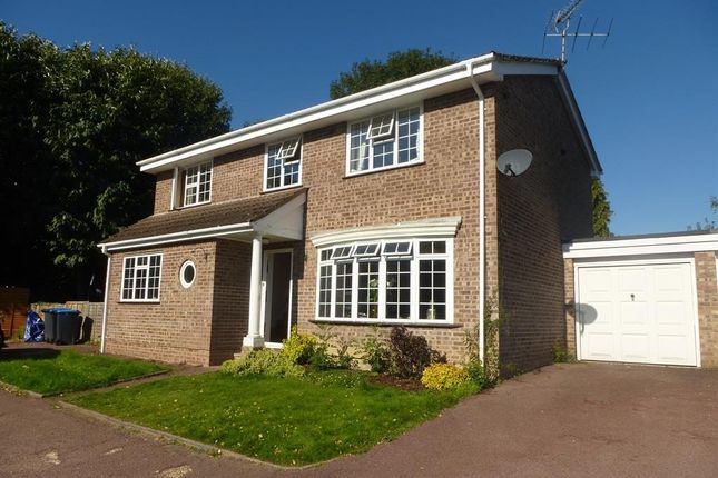 Thumbnail Detached house to rent in Redwood Drive, Haywards Heath