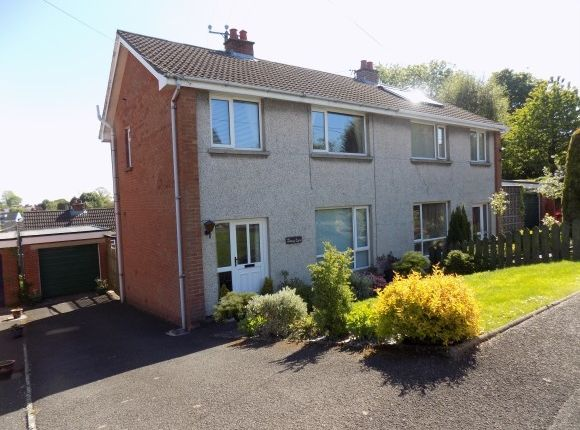 Thumbnail Semi-detached house to rent in Cloverdale Road, Lisburn