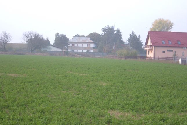 Thumbnail Land for sale in Plot, Mogosesti, Giurgiu, Romania