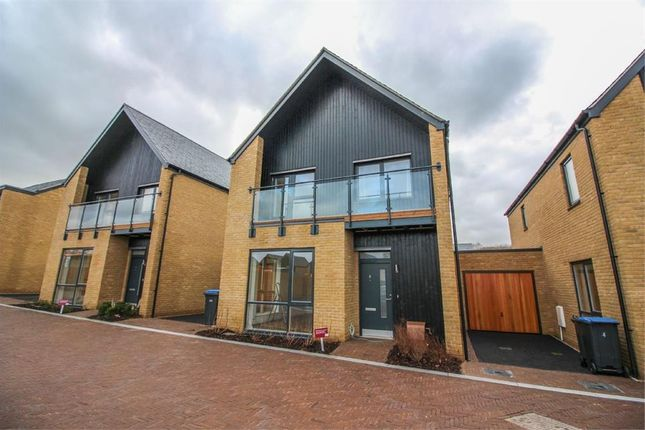 Detached house to rent in Greenfinch Way, Newhall, Harlow