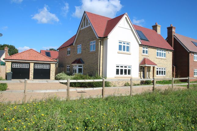 Thumbnail Detached house for sale in Christmas Tree Crescent, Hawkwell, Hockley