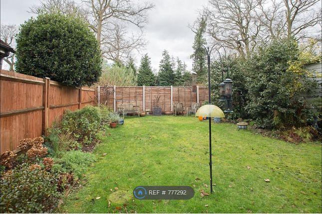 Back Garden of Holm Close, West Byfleet KT15