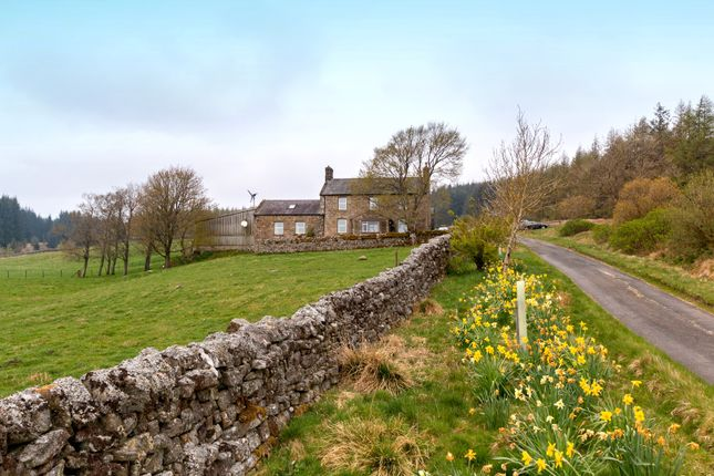 Thumbnail Farm for sale in Tarset, Hexham