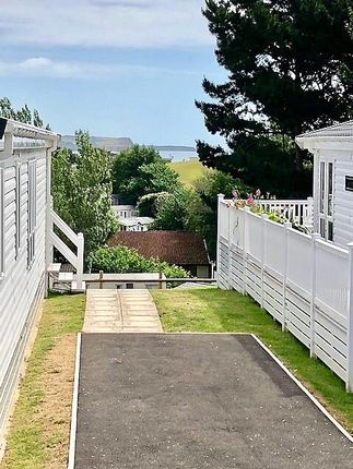 Thumbnail Detached bungalow for sale in Treetops, Week Lane, Dawlish