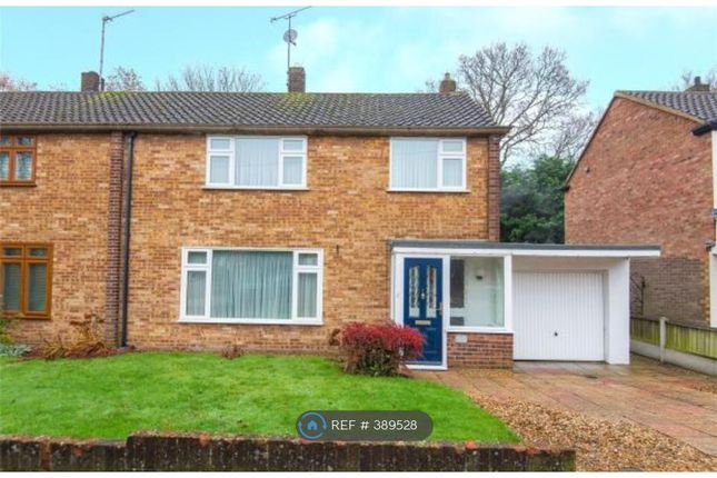 Thumbnail Semi-detached house to rent in Hunter Avenue, Shenfield, Brentwood