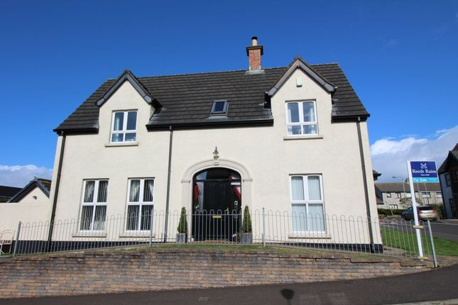 Thumbnail Detached house for sale in Ros-Na-Righ, Islandmagee, Larne