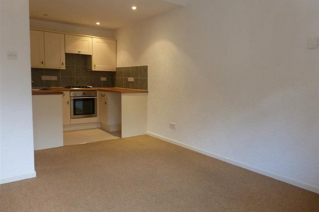 Thumbnail Property to rent in Wildwoods Crescent, Newton Abbot