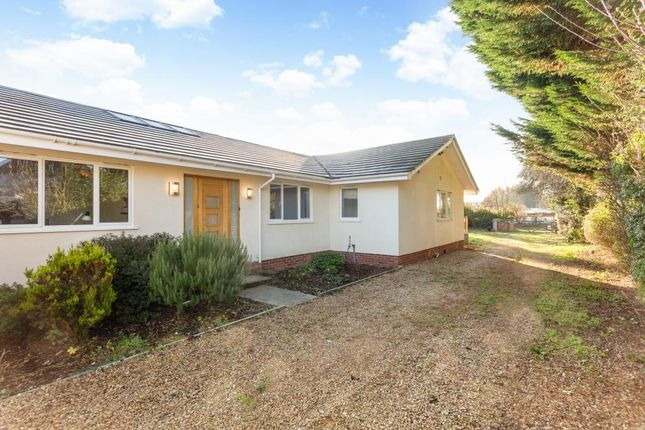 Thumbnail Bungalow to rent in Milley Bridge, Waltham St. Lawrence, Reading
