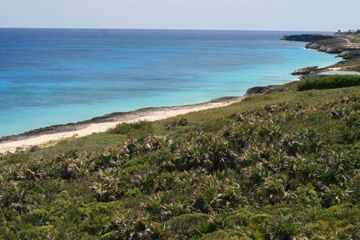 Land for sale in Bookies Bay, Abaco, The Bahamas
