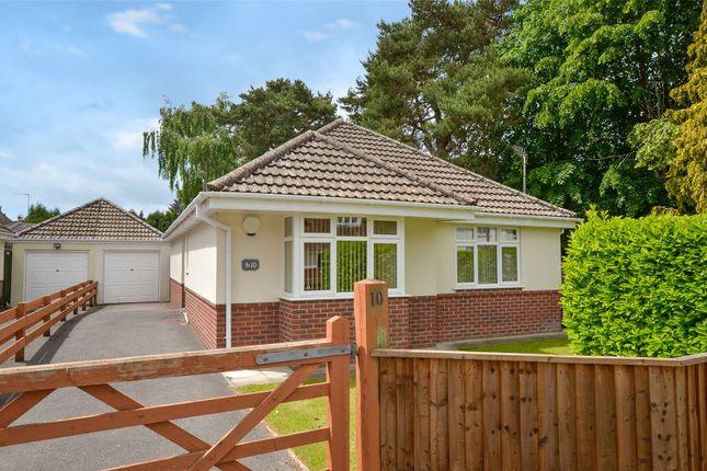 Thumbnail Bungalow for sale in Firs Glen Road, West Moors, Ferndown, Dorset