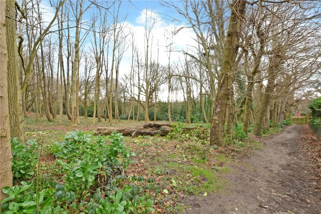 Picture No. 14 of Chalk Pit Road, Banstead, Surrey SM7
