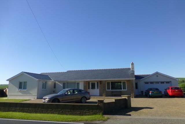 Thumbnail Bungalow to rent in Llysonnen Road, Carmarthen