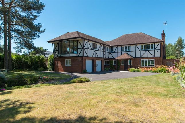 Thumbnail Detached house for sale in Cedar House, Iffin Lane, Canterbury