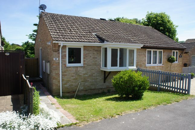Bungalow to rent in St James, Beaminster